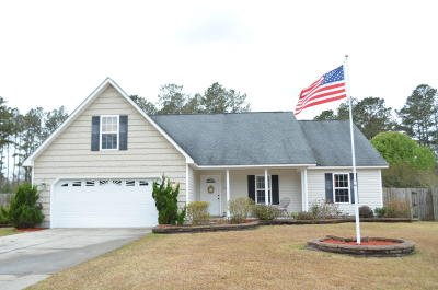 Havelock NC Single Family Home For Sale: $187,500