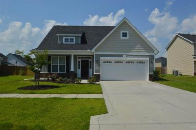 Sterling Farms Single Family Home For Sale: 405 Zircon Court