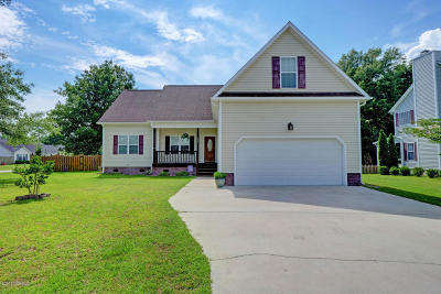 Sneads Ferry Single Family Home For Sale: 1001 Meridian Drive