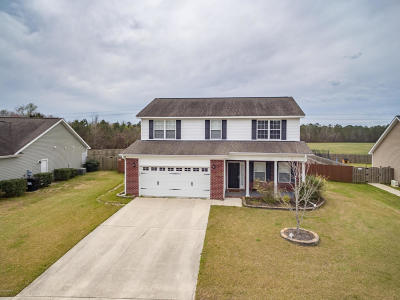Sterling Farms Single Family Home For Sale: 205 Silver Hills Drive