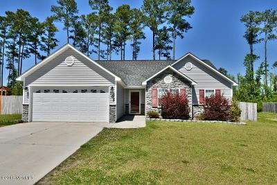 Jacksonville Single Family Home For Sale: 705 Savannah Drive