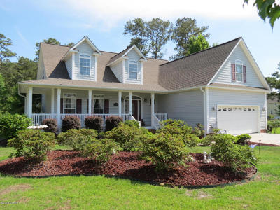 Swansboro Single Family Home For Sale: 131 White Heron Lane