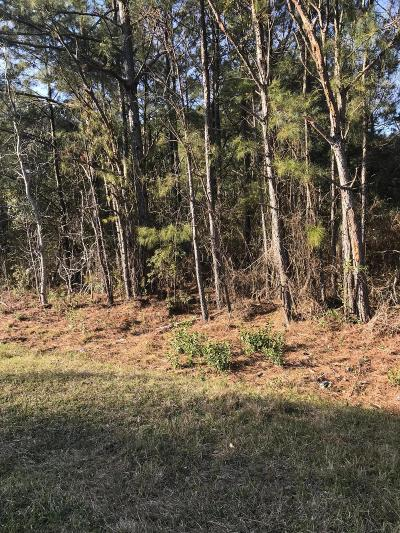 Sneads Ferry Residential Lots & Land For Sale: 437 Chadwick Acres Road