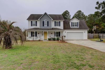 Hampstead Single Family Home For Sale: 1086 Washington Acres Road