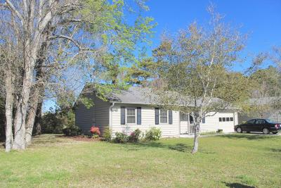 Beaufort Single Family Home For Sale: 128 Briar Patch Drive