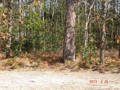 Swansboro Residential Lots & Land For Sale: 117 Brookside Court S