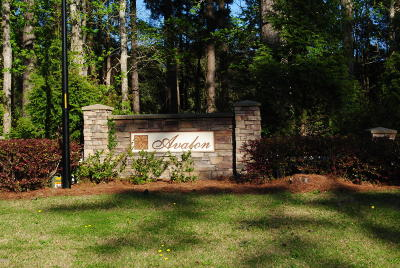 Beaufort Residential Lots & Land For Sale: 189 Landing Road