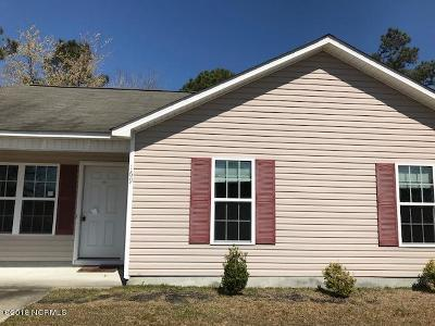 Onslow County Single Family Home For Sale: 169 Ashbury Park Lane