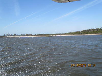 Harkers Island Residential Lots & Land For Sale: Browns Island