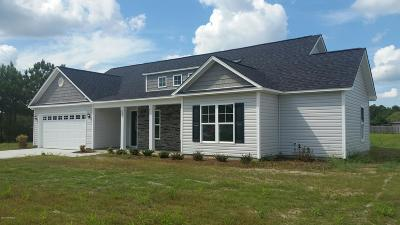 Single Family Home For Sale: 225 Lake Drive