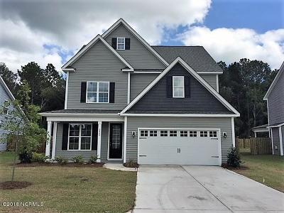 Castle Hayne Single Family Home For Sale: 3820 Smooth Water Drive