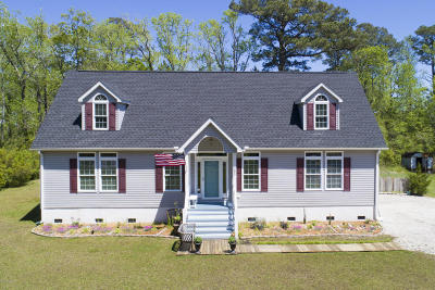 Sea Level Single Family Home For Sale: 385 Nelson Neck Road