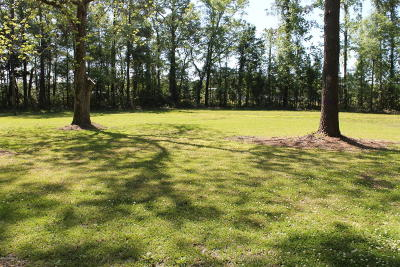 Lake Waccamaw Residential Lots & Land For Sale: 803 Church Street
