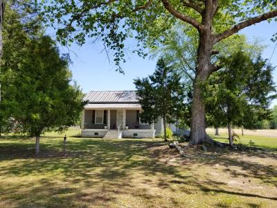 Grimesland Single Family Home For Sale: 4189 Josh Smith Road