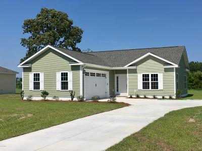 Swansboro Single Family Home For Sale: 209 Palomino Lane