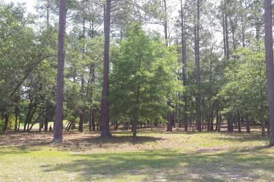 Bolivia Residential Lots & Land For Sale: 121 Plantation Passage Drive SE