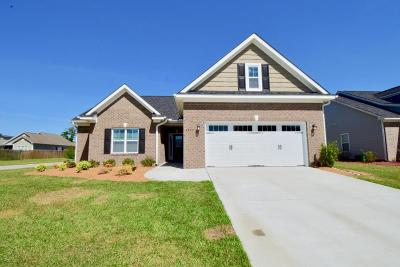 Leland Single Family Home For Sale: 1217 Amber Pines Drive