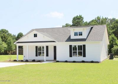 Hampstead Single Family Home For Sale: 376 Zonnie Lane