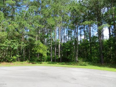 Residential Lots & Land For Sale: 104 Prancer Court