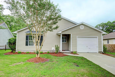 Onslow County Single Family Home For Sale: 426 Boysenberry Lane