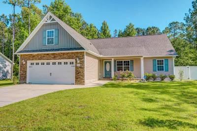 Sneads Ferry Single Family Home For Sale: 860 Old Folkstone Road