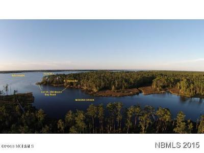 Residential Lots & Land For Sale: 312 Mason Bay Road