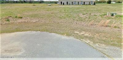 Farmville Residential Lots & Land For Sale: 3048 Lessie Mae Lane