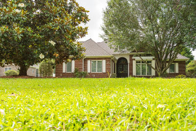 New Bern Single Family Home For Sale: 519 Alexis Drive