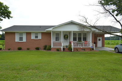 Beulaville Single Family Home For Sale: 494 S Blizzard Town Road
