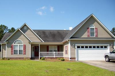 New Bern Single Family Home For Sale: 307 Croatan Woods Drive