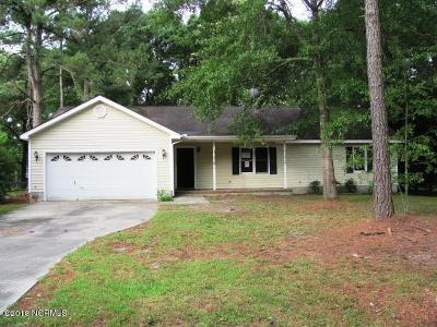 Newport Single Family Home For Sale: 307 Meadows Lane