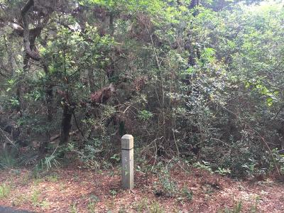 Residential Lots & Land For Sale: 53 Fort Holmes Trail