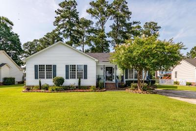 Winterville Single Family Home For Sale: 489 Lora Lane