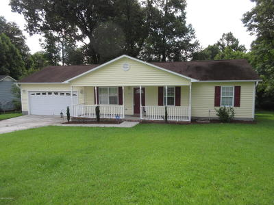 Jacksonville Single Family Home For Sale: 234 Regalwood Drive