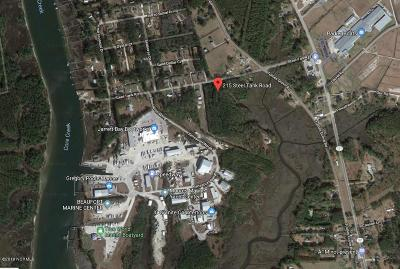 Beaufort Residential Lots & Land For Sale: 251 Steel Tank Road