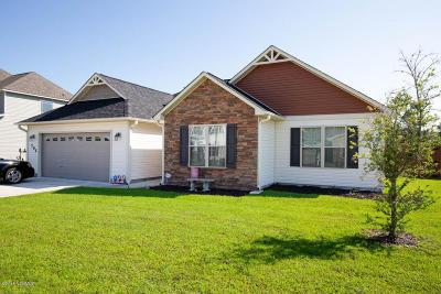 Jacksonville Single Family Home For Sale: 702 Ashley Meadow Lane