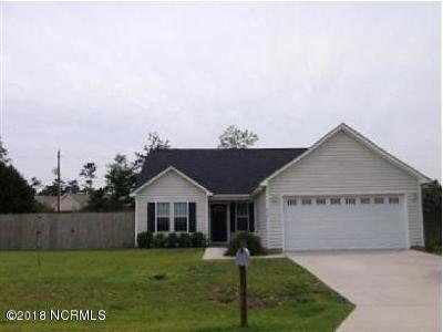Sneads Ferry Single Family Home For Sale: 219 Derby Downs Drive