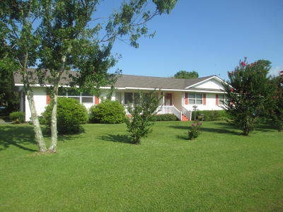 Harkers Island Single Family Home For Sale: 175 Diamond City Drive