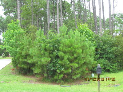 Gloucester Residential Lots & Land For Sale: 204 Thompson Field Circle