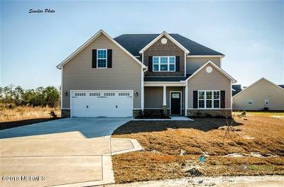 Onslow County Single Family Home For Sale: 408 Whistling Heron Way