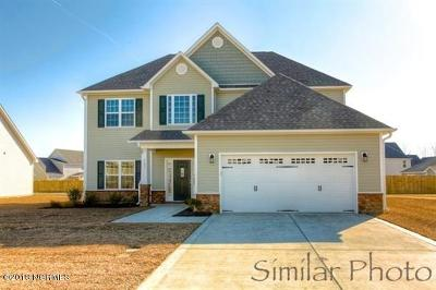 Swansboro Single Family Home For Sale: 419 Whistling Heron Way