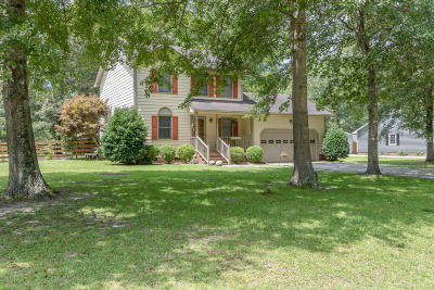 Richlands Single Family Home For Sale: 1142 Lakeview Avenue