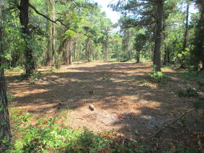 Harkers Island Residential Lots & Land For Sale: 100 Mullens Drive