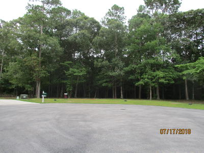 Sneads Ferry Residential Lots & Land For Sale: 100 Mariners Circle