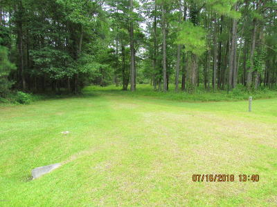 Beaufort Residential Lots & Land For Sale: 101 Hidden Harbor Lane