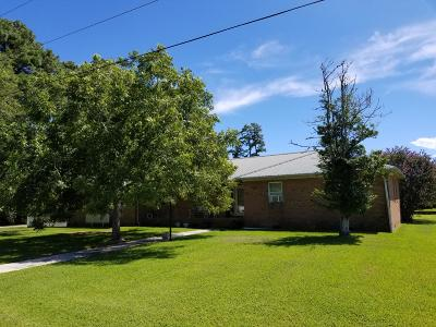 Beaufort Single Family Home For Sale: 134 Crystal Road