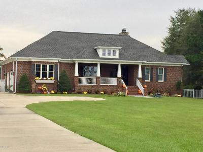 New Bern Single Family Home For Sale: 724 Lilliput Drive