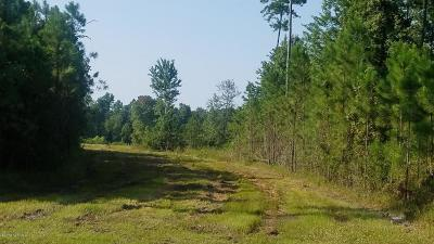 Residential Lots & Land For Sale: 500 Tar Landing Road