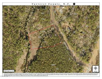Beaufort NC Residential Lots & Land For Sale: $20,000