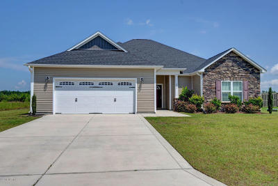 Jacksonville Single Family Home For Sale: 208 Southern Dunes Drive